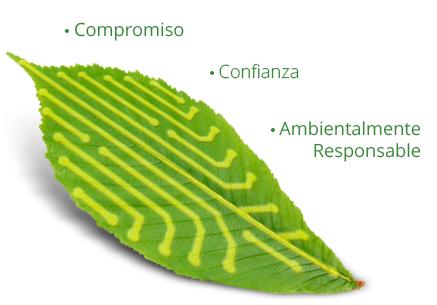 Nuestros valores - Grupo Ecológico MAC